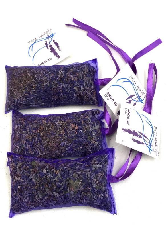 Lavender Wind Bug be Gone