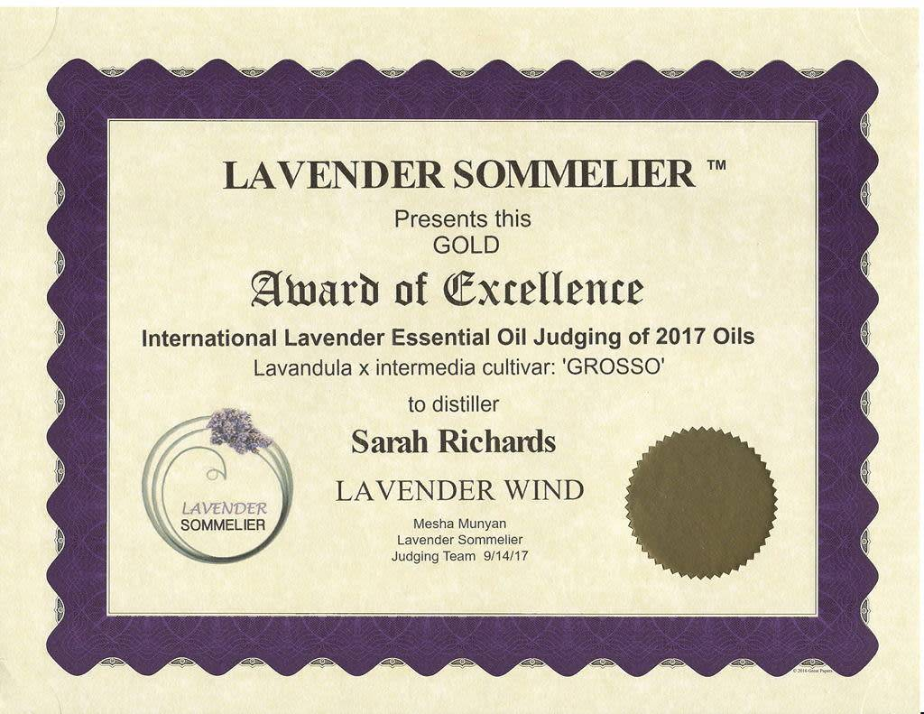 Lavender Wind Grosso Essential Oil - Tiny 2 ml