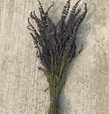 Lavender Wind Dried Bunch of Lavender - Field Harvested
