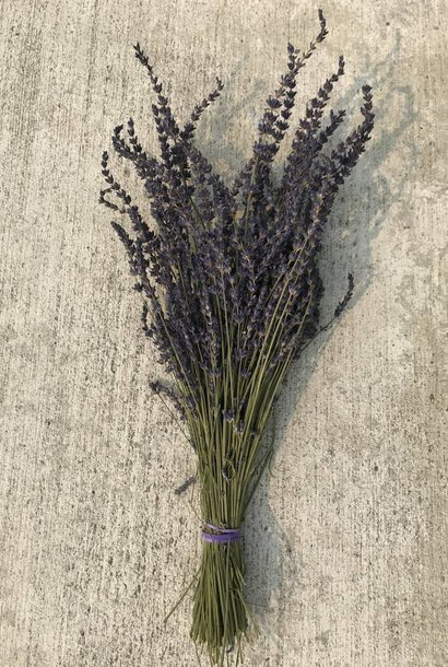Dried Bunch of Lavender