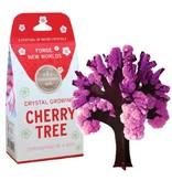 Copernicus Crystal Growing Cherry Tree