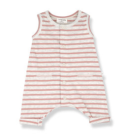One More In The Family Monaco Romper - Rose