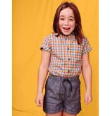 Tea Collection Plaid Button Up Shirt- Spring Plaid