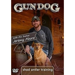 Gun Dog Gun Dog Shed Antler Training