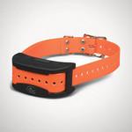 SportDog Contain And Train Add A Dog Collar
