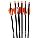 PSE Archery Carbon Force Sniper Carbon Arrows