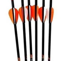 PSE Carbon Force Sniper Carbon Arrows