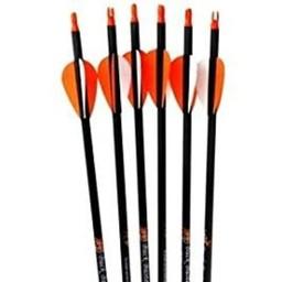 PSE Carbon Force Sniper Carbon Arrows