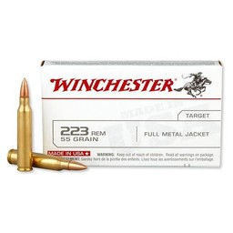 Winchester Winchester Target 55 Grain Full Metal Jacket (20 Rounds)