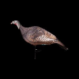 Primos Hunting Primos Photoform Hen Turkey Decoy