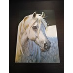 Imagimex Greeting Cards White Horse