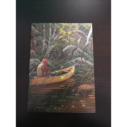 Imagimex Greeting Cards Solo Fisher