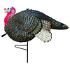 Primos Hunting Primos Gobblestopper Jake Turkey Decoy