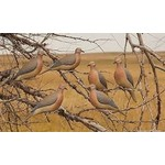Greenhead Gear Dove Decoys 3 Perching 3 Resting (6-Pack)