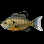 Swimbait Series Live Target Sunfish