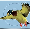 "Birchwood Casey Birchwood Casey Pre Game Targets Duck 8-12""x18"""