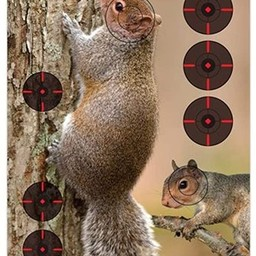 "Birchwood Casey Birchwood Casey Pre Game Reactive Squirrel Target 8 - 12"" x 18"""