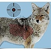 "Birchwood Casey Birchwood Casey Pre Game Targets Coyote 3 - 16.5""x 24"" Reactive Target"