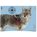 """Birchwood Casey Pre Game Targets Coyote 3 - 16.5""""x 24"""" Reactive Target"""