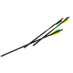 "Excalibur Excalibur Illuminated FireBolt 20"" Carbon Arrows (3-Pack)"