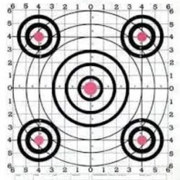 Champion Score Keeper 100 Yard Sight-In Rifle Target (12-Pack)