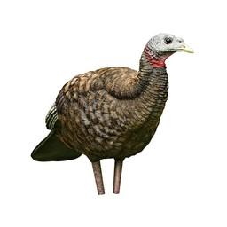 Avian-X LCD Collapsible Breeder Hen