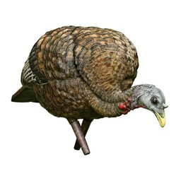 Avain-X LCD Feeder Hen Turkey Decoy