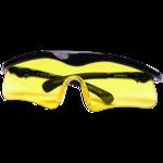 Daisy Shooting Glasses