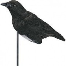 Bell Outdoors Pro-Lite Crow Decoy