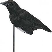 Bell Outdoors Pro-Lite Crow Decoy