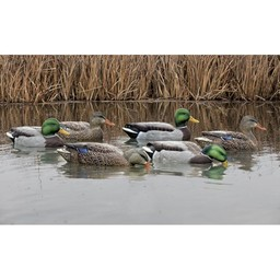Avian-X Topflight Mallards Fusion Series (3 Drakes/3 Hens)