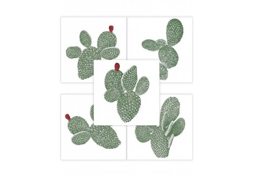PaperMint Papermint Stickers Opuntia Set Of 5
