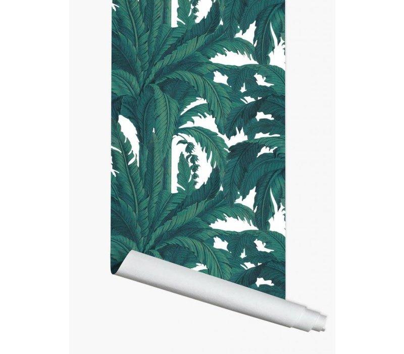Papermint wallpaper Musa