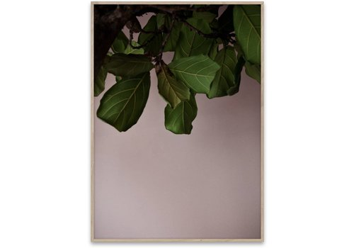 Paper Collective Green Leaves Print