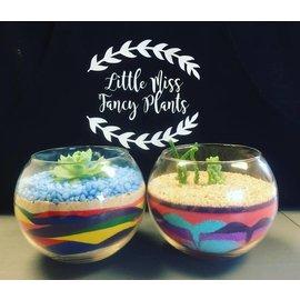 Little Miss Fancy Plants Fancy Plants Party- Sand Art Feb 16 BYOB