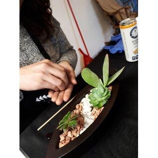 Little Miss Fancy Plants Fancy Plants Party- Metal Planter March 9 BOYB