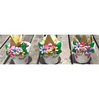 Little Miss Fancy Plants 3pm Kids UNICORN succulent planting workshop