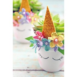 Little Miss Fancy Plants 3pm Kids UNICORN succulent planting workshop