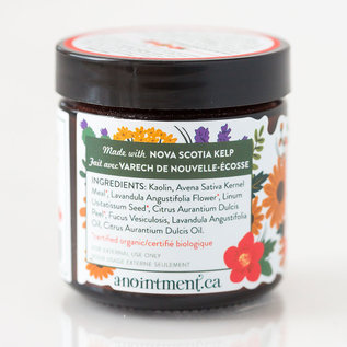 Anointment Anointment Exfoliating Clay Cleanser