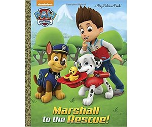 Paw Patrol Marshall to the Rescue
