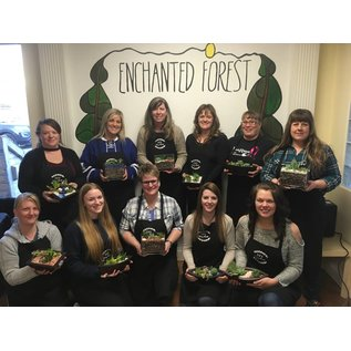 Little Miss Fancy Plants DIY Fancy Plants Private Event
