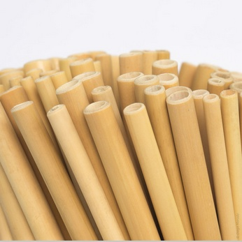 bamboo straw enchantedforest