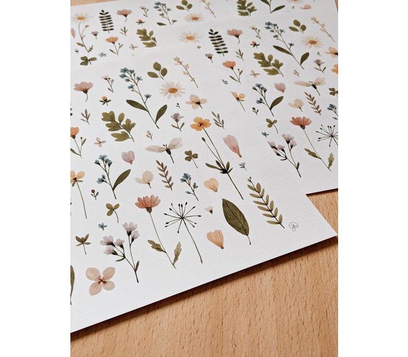 Affiche Herbier fleurs pressées 11x14