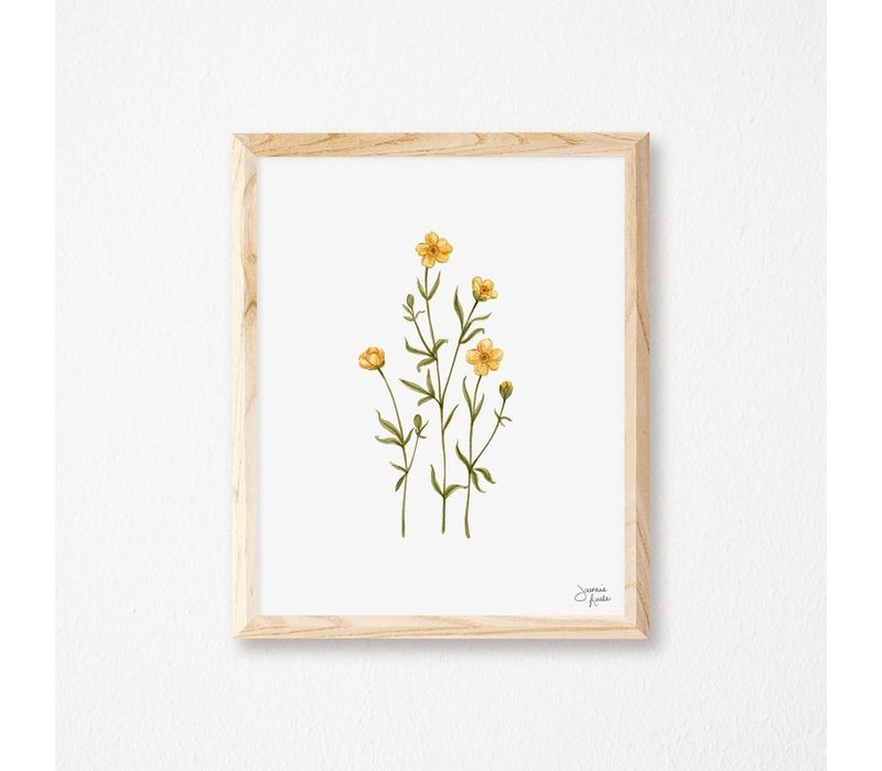 Buttercups Print 8x10