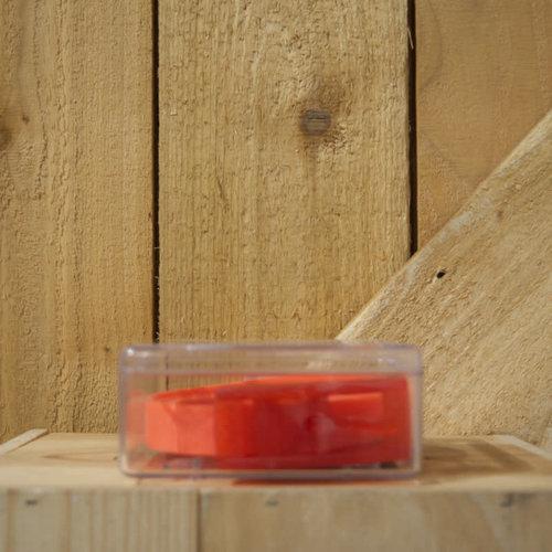 Borel Youth Nickel Free Belt - Red