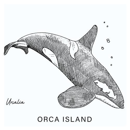 Ursalia Creative Orca Island T-shirt