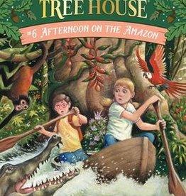 Magic Tree House Afternoon on Amazon MTH #6