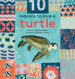 Quarto 10 Reasons to Love a Turtle