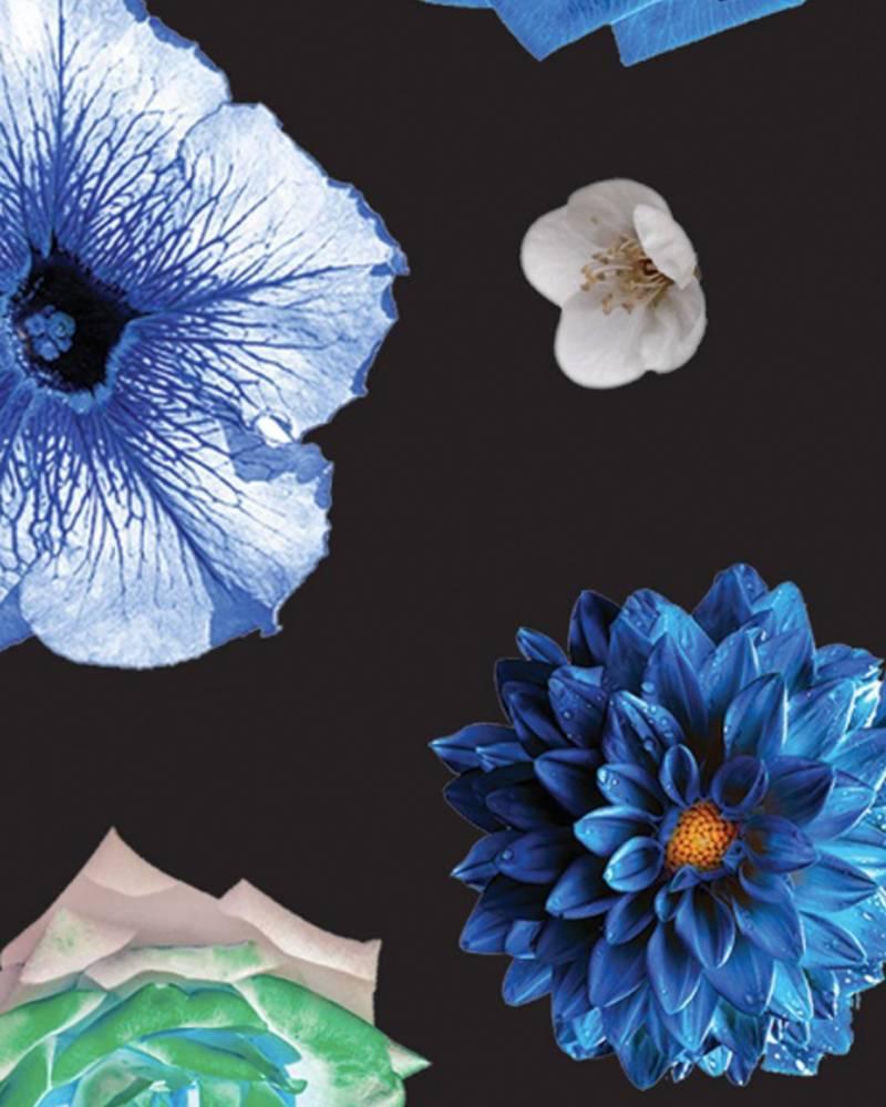 Terez Micro Bloom Capri