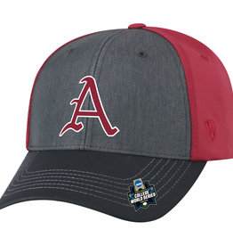 2019 Arkansas Razorback The Reach CWS Hat